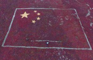 liebold_xinjiang_china_surveillance_rtsq5hx_copy
